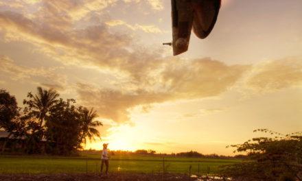 163 – Zachód słońca nad bajorem