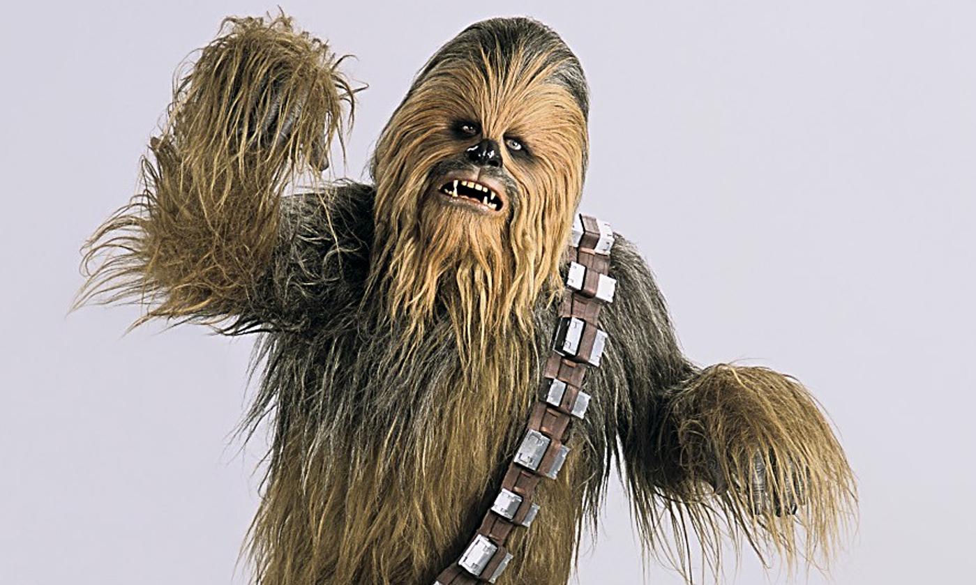Chewbacca the Wookiee Peter Mayhew