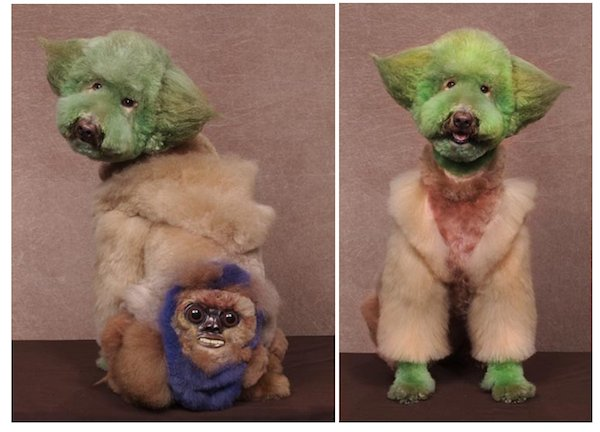 Yoda pies